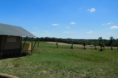 Tente Safari de 25m2 - Tält
