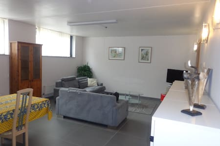 Spatious apartment near Brussels Airport - Kortenberg