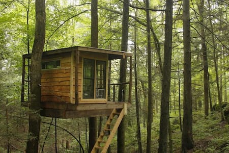 Flying-Squirrel-Tree-House - Stanton - Baumhaus
