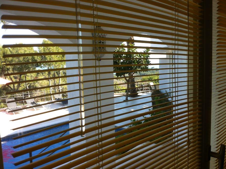 Asomarse a la ventana del estudio es un placer