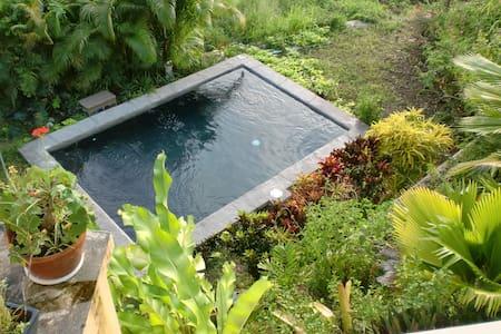 Casa de Dawn /pool/ private room
