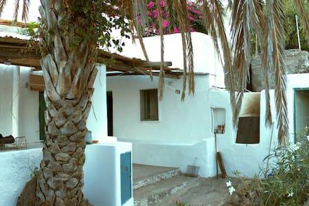 Casa della Palma - Ginostra - Maison