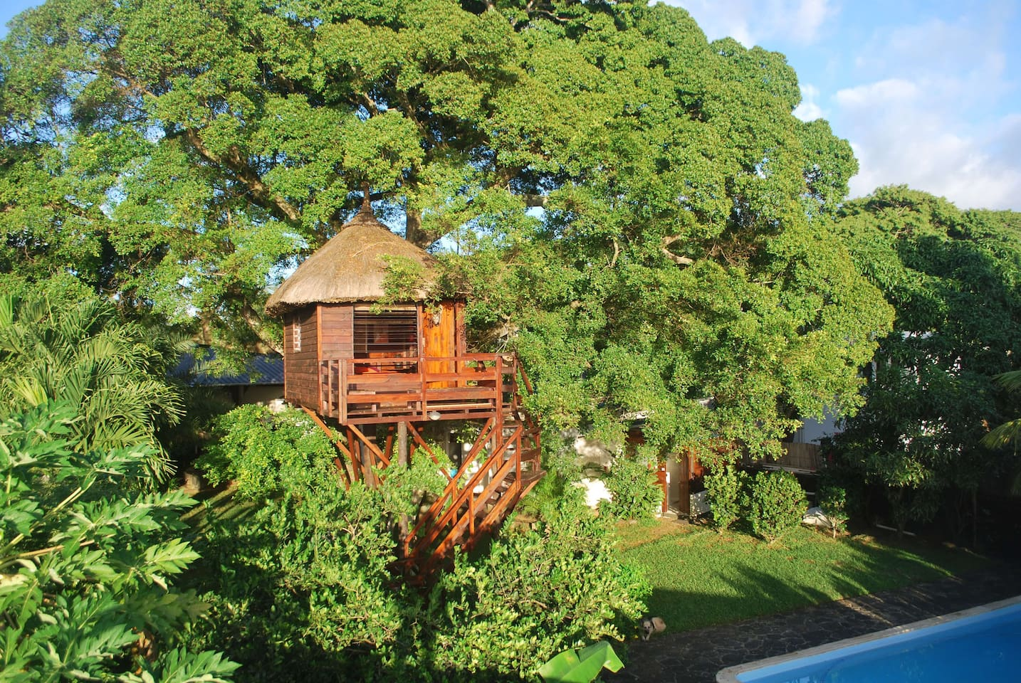 Cabane dans l'Arbre/ Tree House Cabin