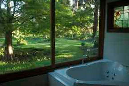 Enchanted Woods Spa Cottage - Main Arm - Stuga