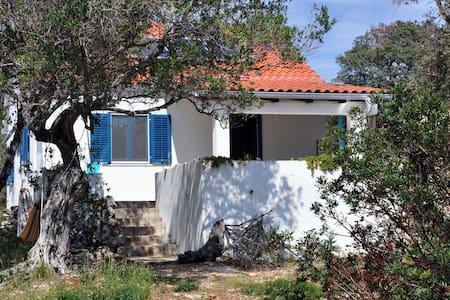 Very special, charming House/Silba - House