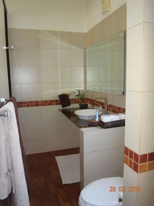 Bathroom (shower not shown)