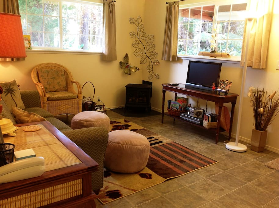The Living room w/ Fireplace, TV, DVD's, CD's, Ipod/Ph dock, Wi Fi, books, games... and comfy too!