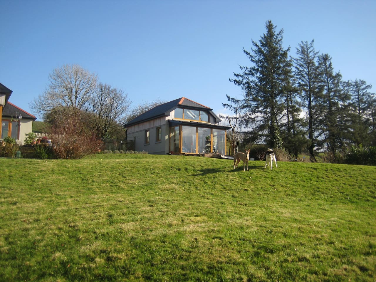 Main house and dogs