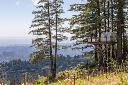 Treehouse in Vineyard Overlooking Monterey Bay - Los Gatos - Casa en un árbol