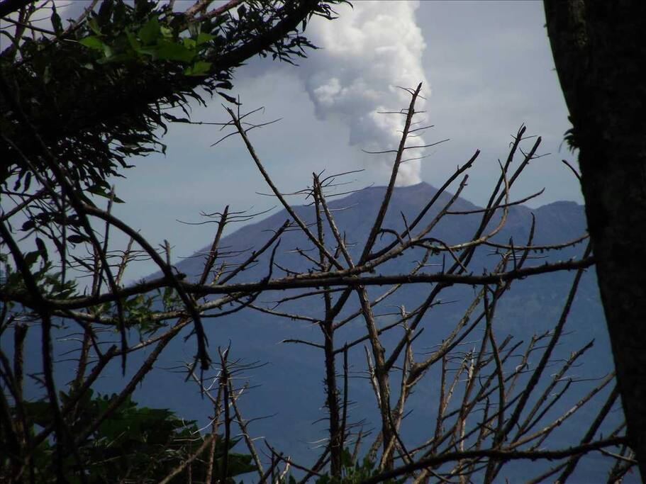 Volcano Turriabla ...view from hike on coffee finca!