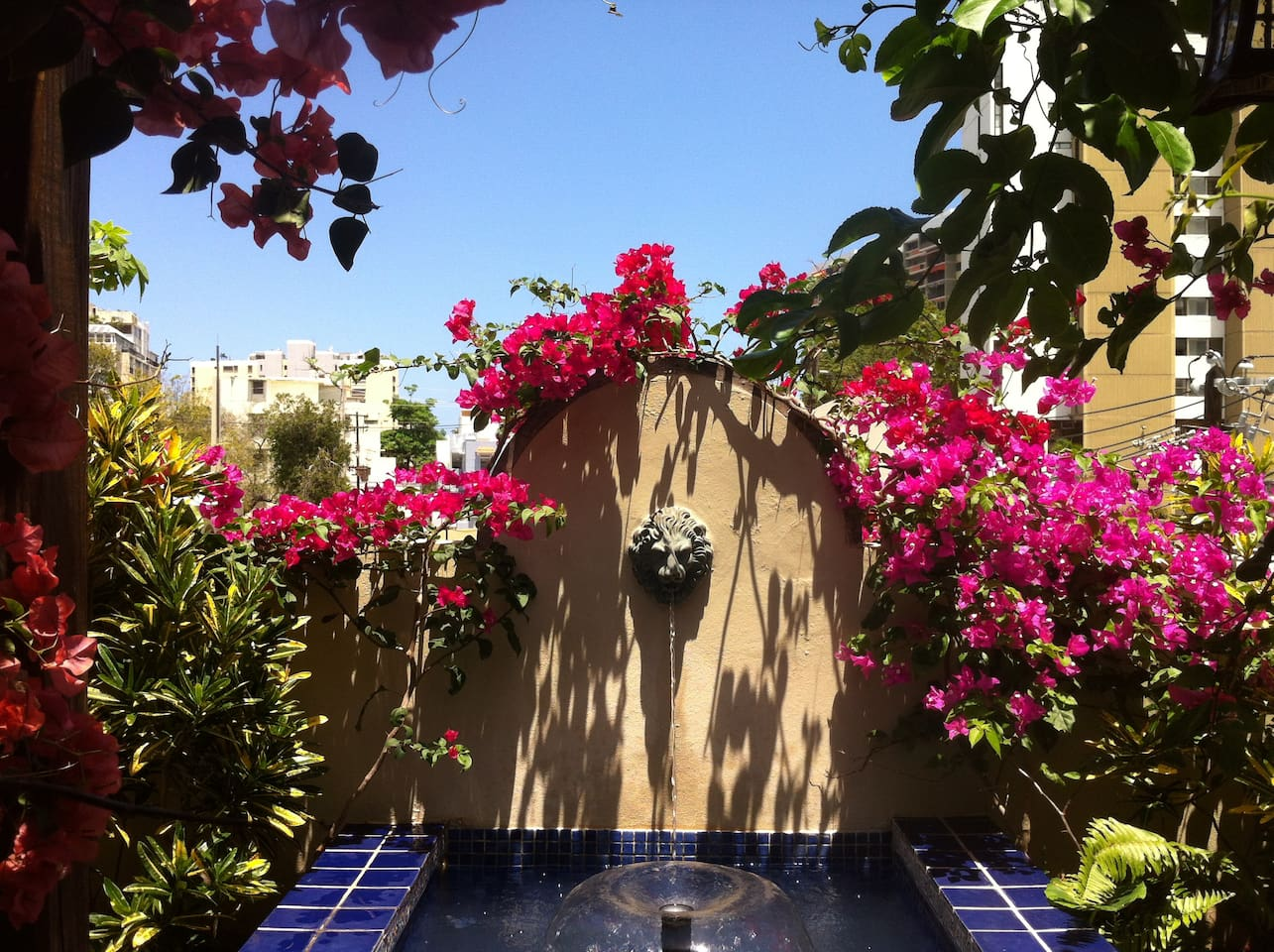 Relax with the sounds of the fountain surrounded by bougainvillea and tropical plants.