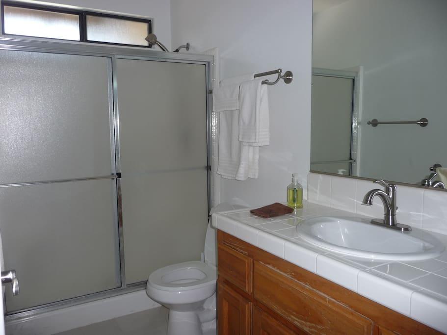 Master bathroom upstairs.