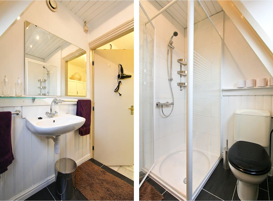 Small bathroom with toilet, sink and shower cell
