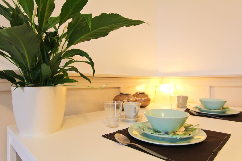 Plant on the table. Cutlery and plates and cups etc are provided