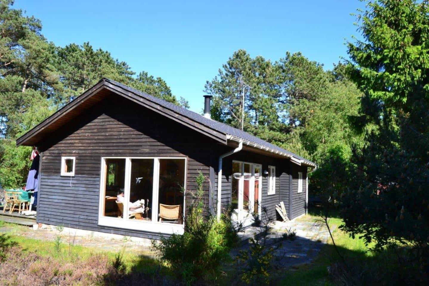 Huset ligger på stor ugenert naturgrund