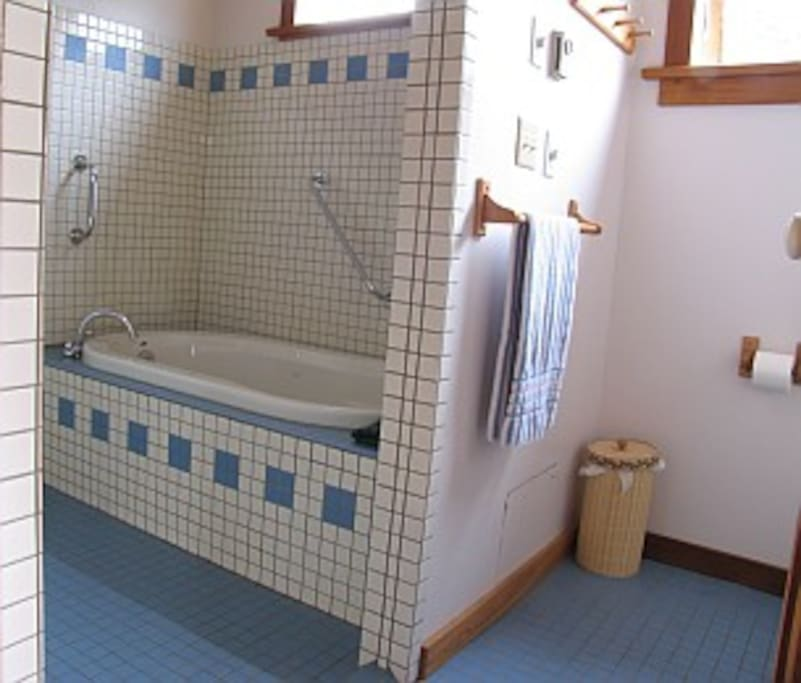 Carriage House Cottage (bath multi-head shower and jetted tub)