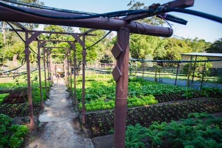 Organic Farm Retreat - Apartament
