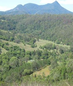 Kunghur Rainforest Farm - Kunghur - Bungalow
