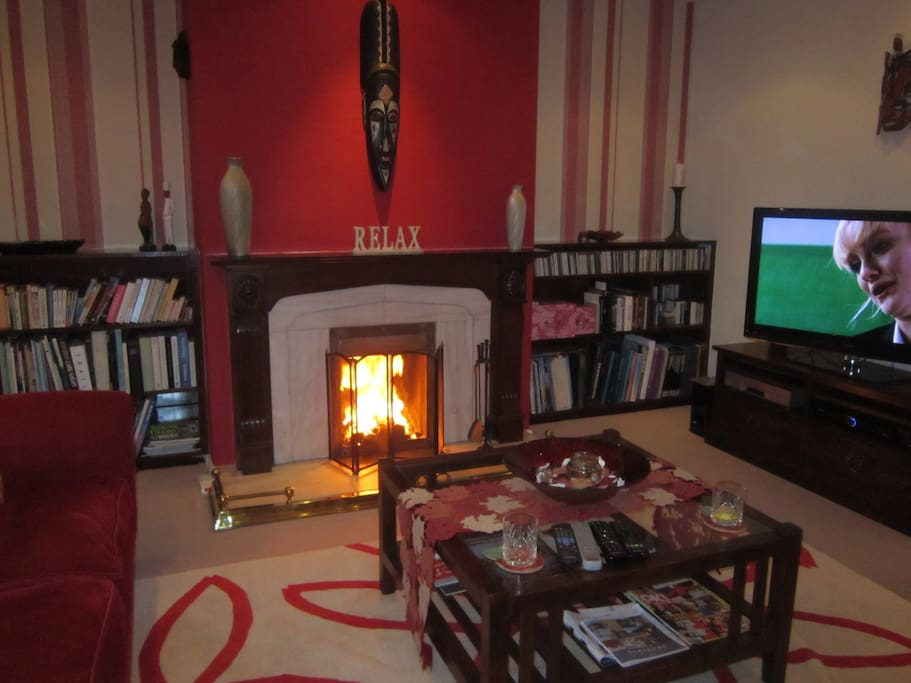 Cosy lounge showing TV, music, books and open fire