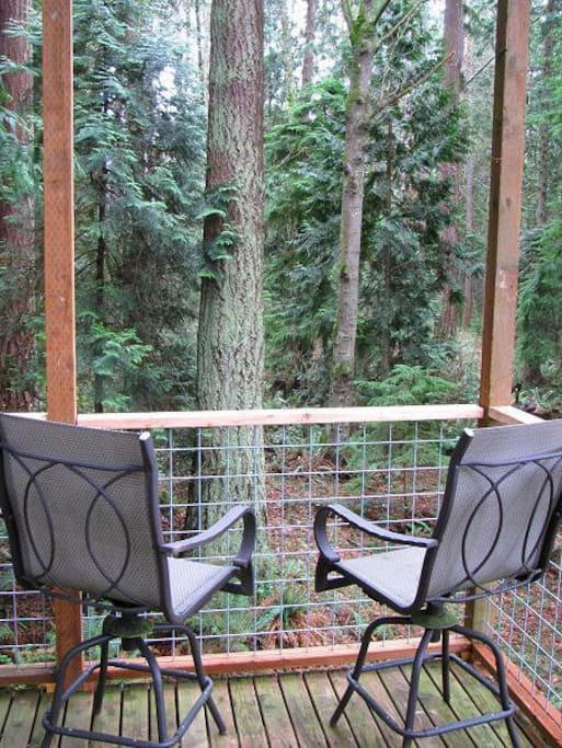 10 x 12 covered deck with endless views of the forest.  Table and more chairs too.