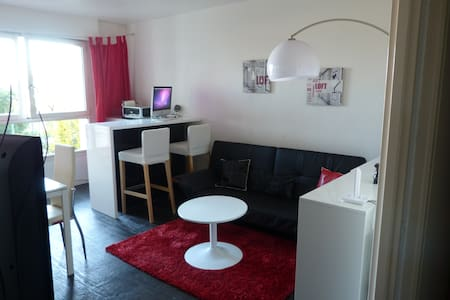 Big room for rent for 1 or 2 people - Issy-les-Moulineaux