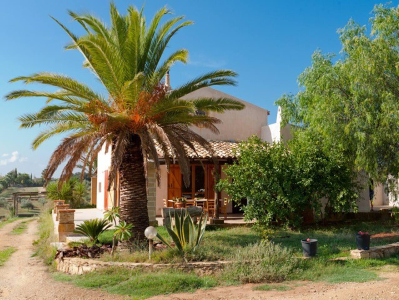 Cottage Selinunte con 300 mq dui giardino con strada privata