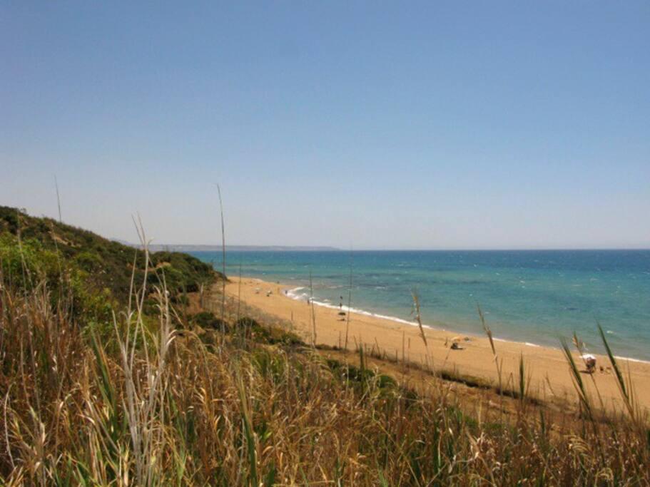 Riserva orientata wwf, magica spiaggia