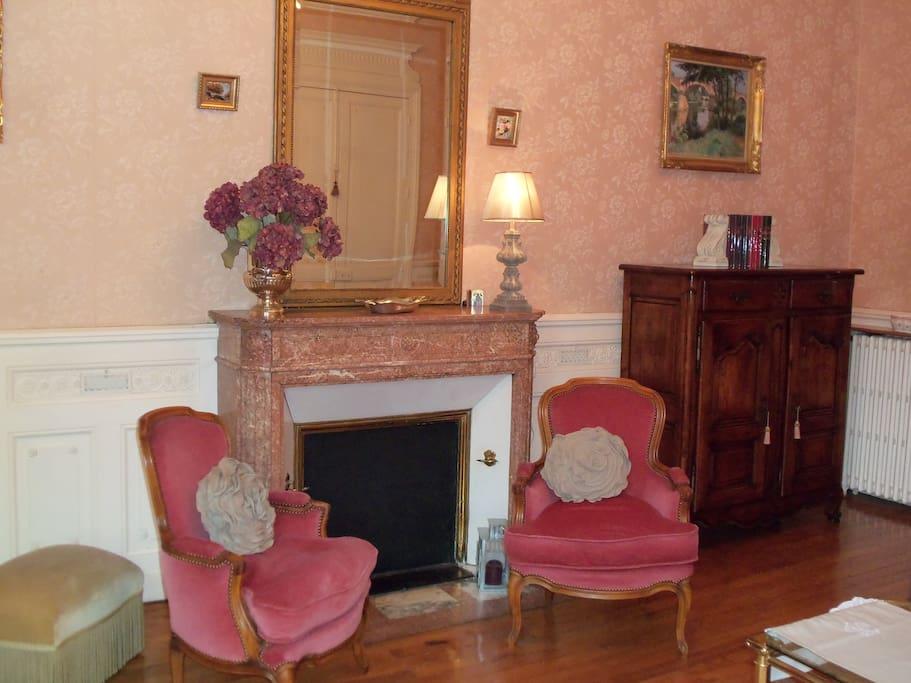 Magnifique cheminée en marbre dans le grand salon.