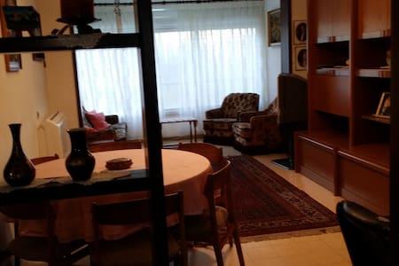 Homey apartment near the Technion - Lakás