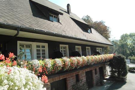 Original Black Forest Hideaway - Oppenau - Pousada
