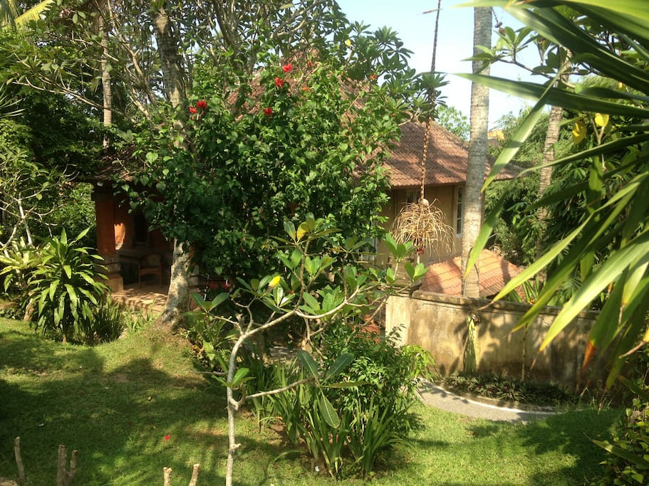 View from the small road from the pool to Villa Cinta
