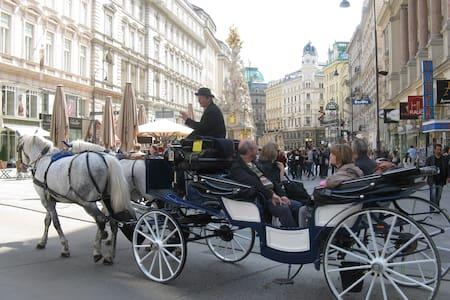 HopInHopOut Vienna at your Doorstep