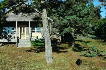 Island Living in Maine Log Cabin - Beals - Hus