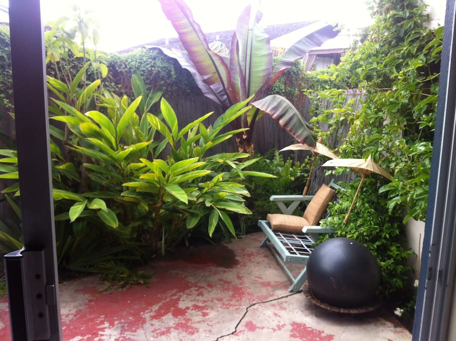 A tropical garden just outside the sliding glass door of the bedroom