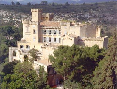 Chateau de La Barben, close to Aix  - La Barben