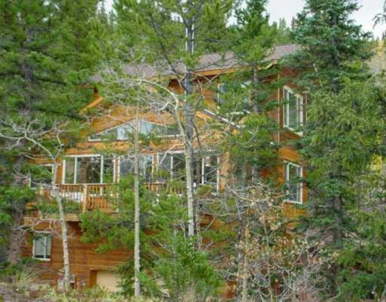 The Treehouse- private rooms and bathrooms, share living room,kitchen and large deck