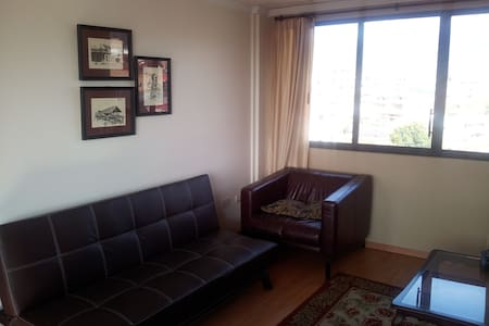 301- 1bd/bath Furnished Apartment  - Pis
