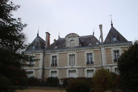 Une chambre au Château ! - Joué-lès-Tours - Bed & Breakfast