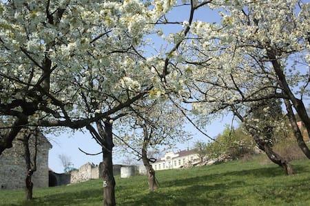 Lenno Castle, Lehnhaus, Paleis Leno - Łupki