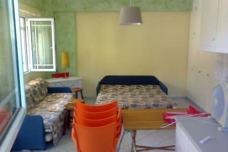 Ισογειο στουντιο στο Σαράντη Βοιωτίς, 150μ παραλία - Wohnung