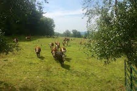 Equestrian Haven at Sentinel Farms - Starksboro - Pousada