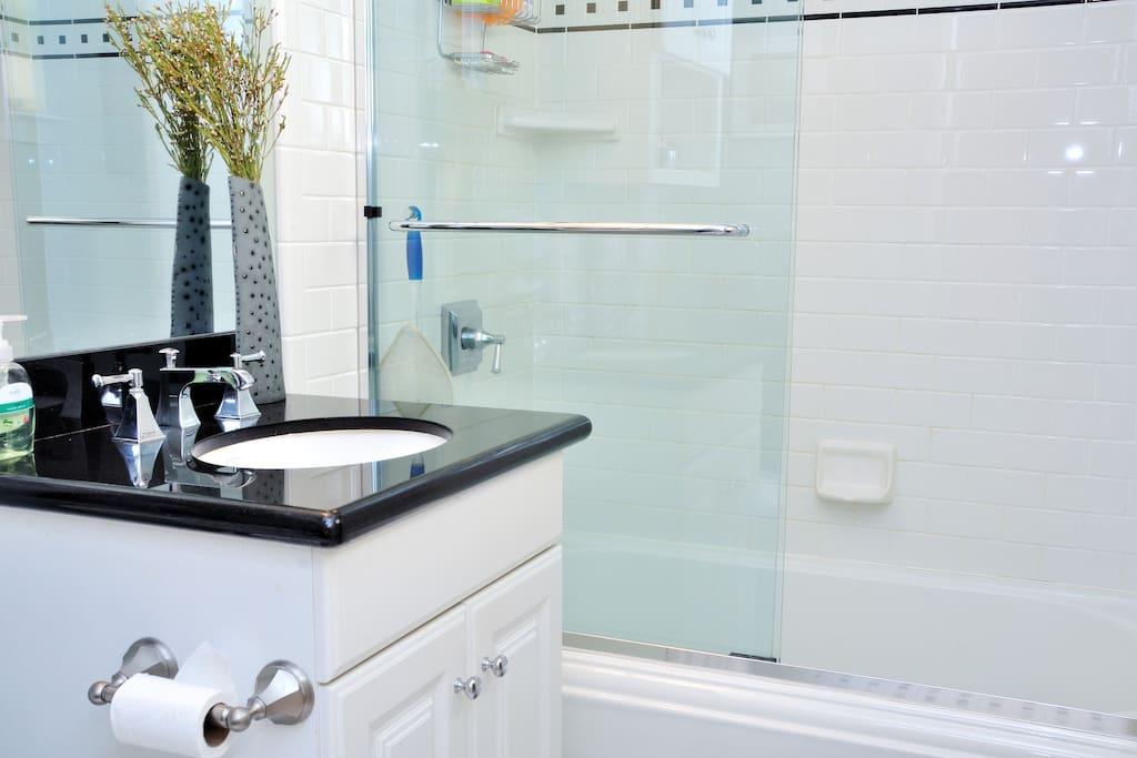 bathroom (bathtub and shower)