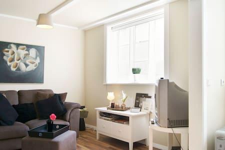 Cosy apartment in 101 Reykjavík