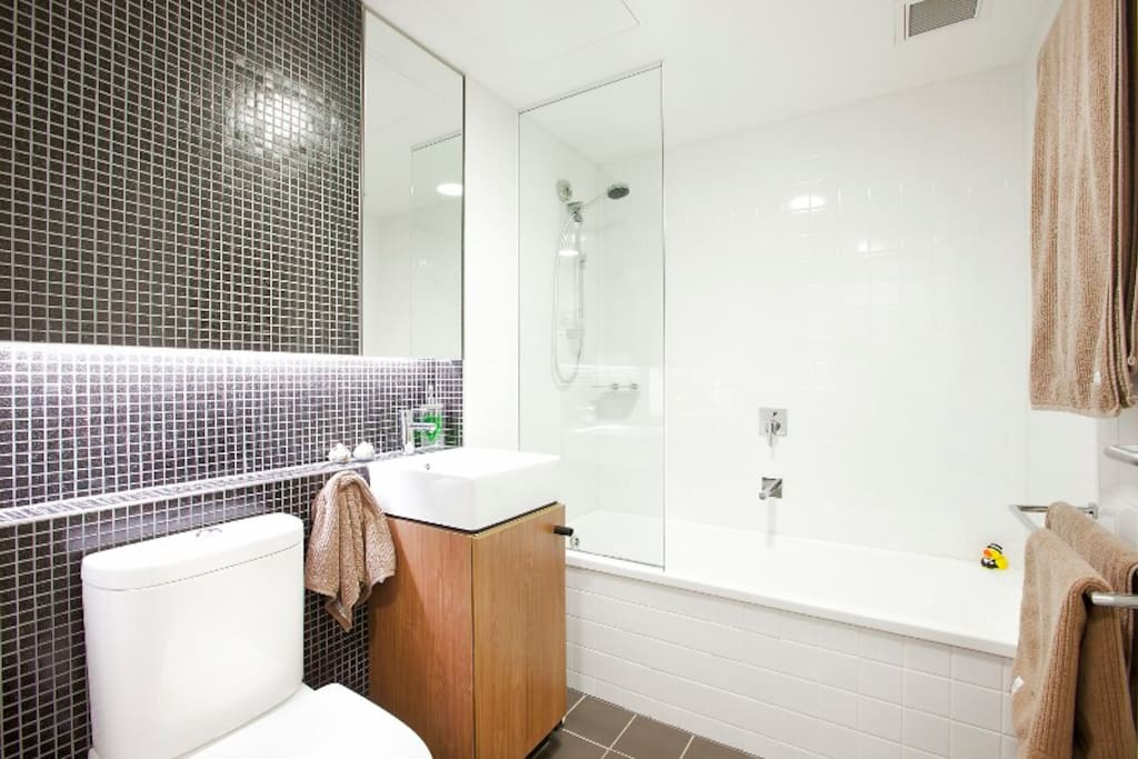 Guest Bathroom with bath and shower over and extendable line.