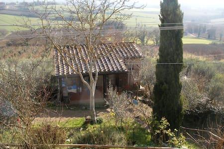 Casa Il Girasole - House