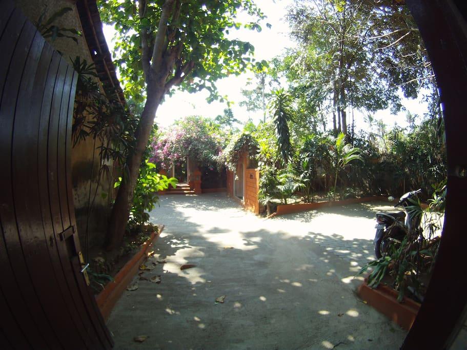 Magiс Buddah Garden Ambika