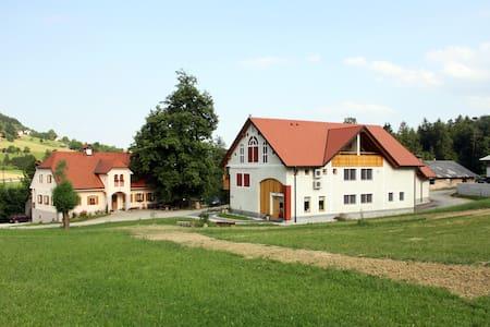 Wellness, farm, home made cheese - Zalec