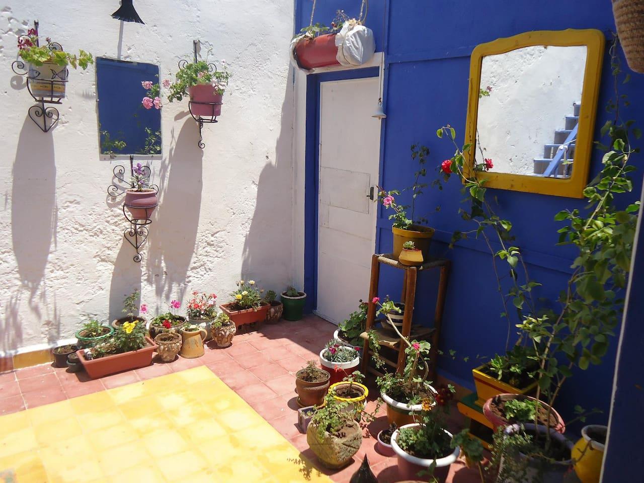 Appartement dans médina d'Essaouira