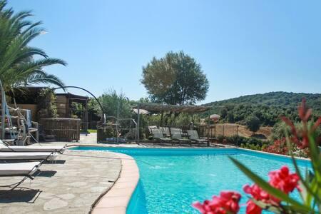 Maison Corse avec piscine partagée - Propriano - Villa