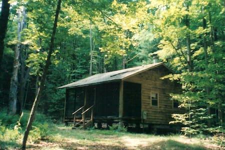 Woodland cabin - near Oneida Lake - Camden - Blockhütte